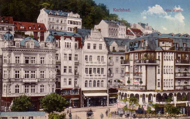 Karlsbad, Alte Wiese