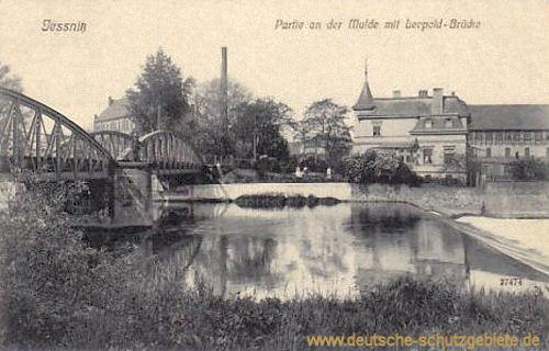 Jessnitz, Partie an der Mulde mit Leopold-Brücke