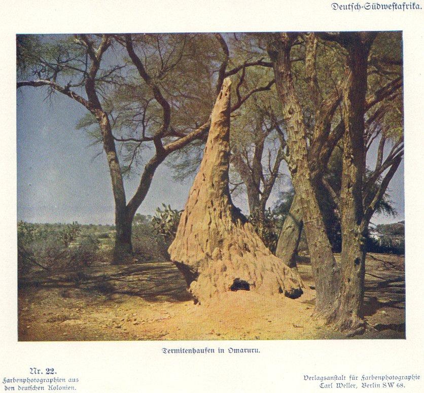 Nr. 22 Deutsch-Südwestafrika, Termitenhaufen in Omaruru