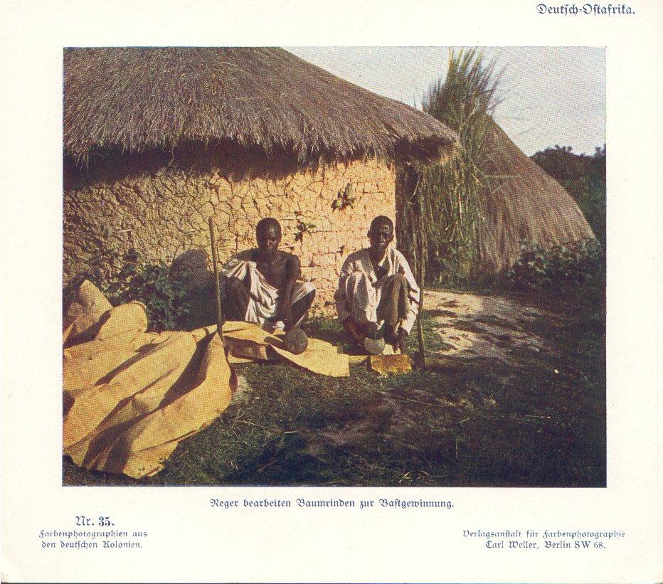 Nr. 35 Deutsch-Ostafrika, Neger bearbeiten Baumrinden zur Bastgewinnung
