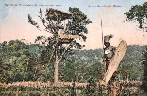 Deutsch-Neu-Guinea, Baumwohnungen