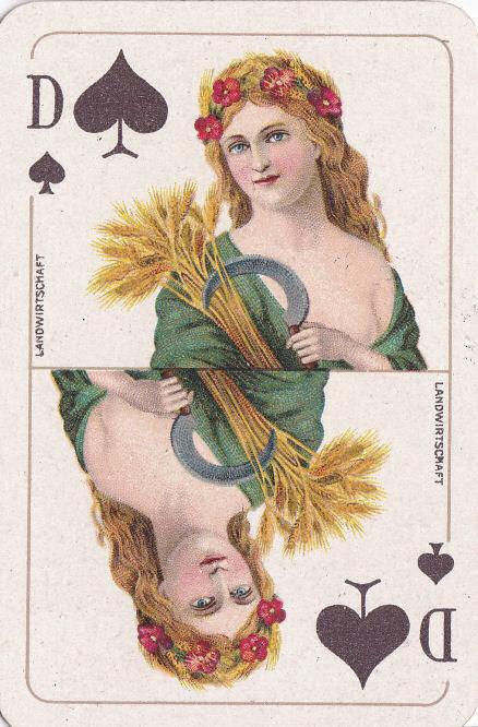 Pik Dame (Landwirtschaft)