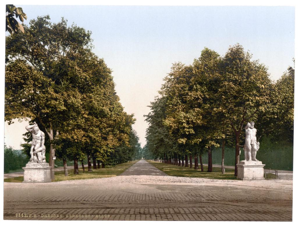 Dresden. Herkules-Allee