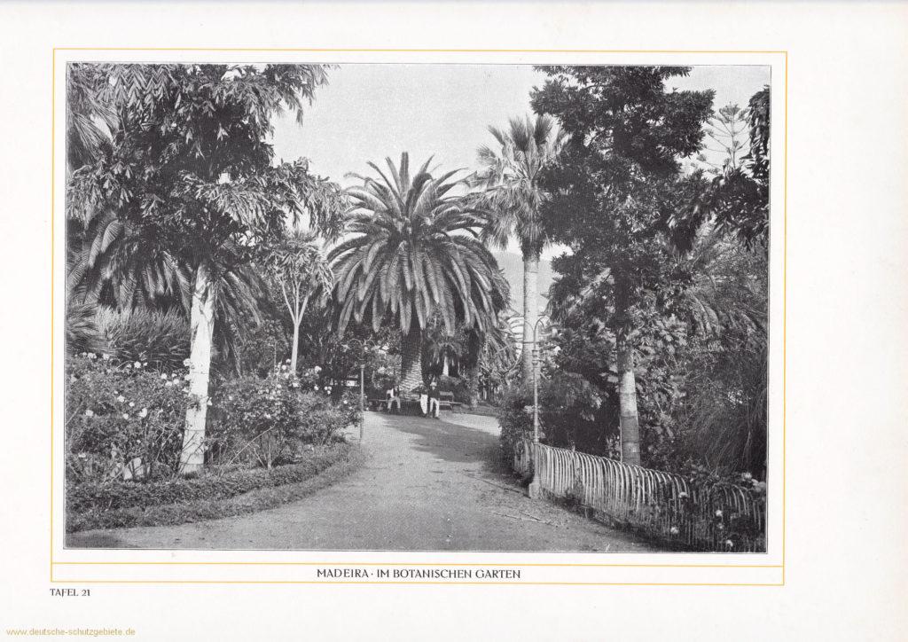 Madeira - Im botanischen Garten
